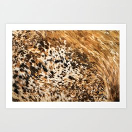 Rustic Country Western Texas Longhorn Cowhide Rodeo Animal Print Art Print