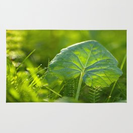 Large Green Leaf On A Sunny Background decor #society6 #homeart Rug