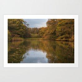 Autumn Ponds - 4 Art Print