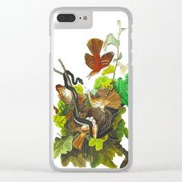 Ferruginous Thrush John James Audubon Vintage Birds Of America Illustration Clear iPhone Case