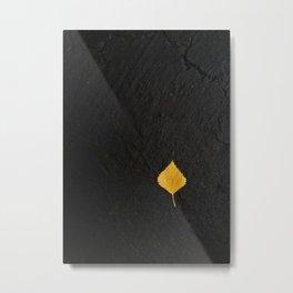 Leaf on dark cement Metal Print