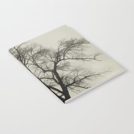 Bare Branches in Winter Fog Notebook
