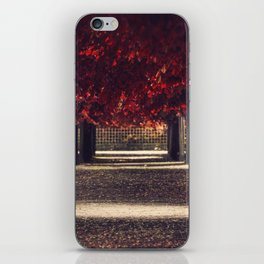 Red colors of autumn, surreal photo, red trees, alley in a park iPhone Skin