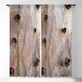 Eucalyptus Tree Bark and Wood Texture 14 Blackout Curtain