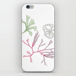Seaweed and Lotus Root iPhone Skin