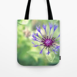 Searching For Sanity Tote Bag