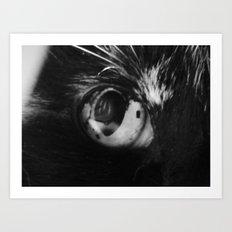 cat eye 2017 Art Print