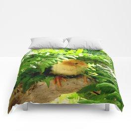 Chicklet Comforters