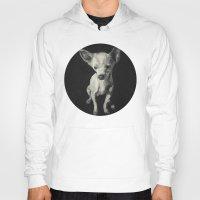 chihuahua Hoodies featuring Chihuahua dog  by Sara.pdf