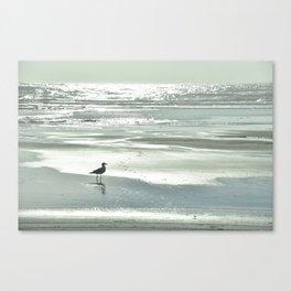 BIRDIE WALKING ON THE BEACH AT SUNSET Canvas Print