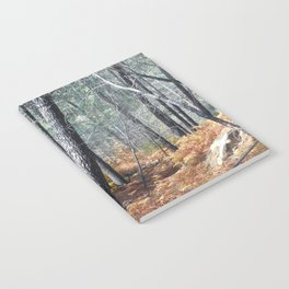 Fall Forest with Ferns Notebook