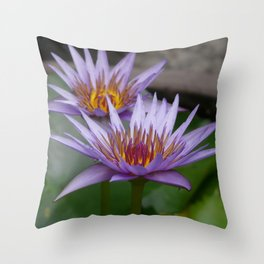 Nymphaea 'Rhonda Kay' VI Throw Pillow