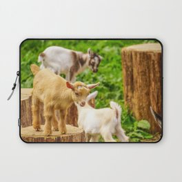 Baby Goats Playing Laptop Sleeve