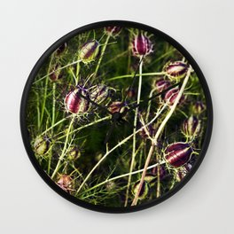 LOVE in a Mist - NIGELLA damascena Wall Clock