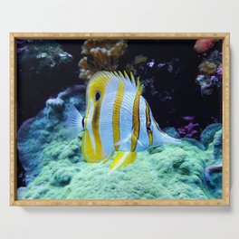 Beautiful Yellow Butterfly Fish Serving Tray