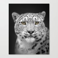 snow leopard Canvas Prints featuring Snow Leopard by Linsey Williams Wall Art, Clothing, And
