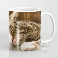 tigers Mugs featuring Sleeping Tigers by Shalisa Photography