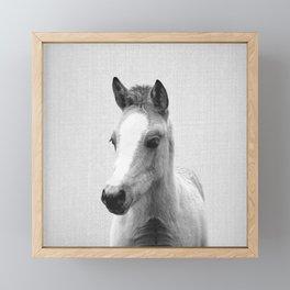 Baby Horse - Black & White Framed Mini Art Print
