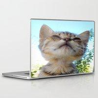 kitten Laptop & iPad Skins featuring Kitten by Ricarda Balistreri