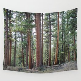 Ponderosa Pine Forest Wall Tapestry