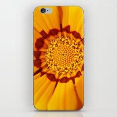Orange Sun - gazania flower 3509 iPhone & iPod Skin