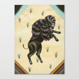 The Way of The Buffalo   Canvas Print