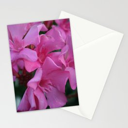Closeup Shot of Pink Flowers on Oleander Shrub Stationery Cards