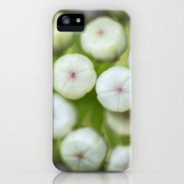 Wht-flowered Milkweed iPhone Case