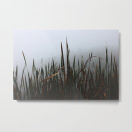 Lake Mansfield IV Metal Print
