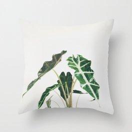 Elephant Ear Throw Pillow