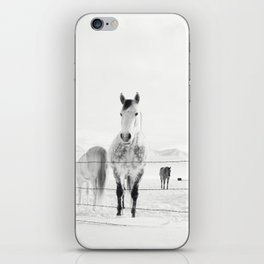 Winter Horse Landscape iPhone Skin