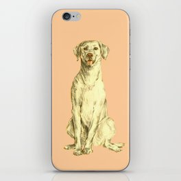 Labradorable iPhone Skin