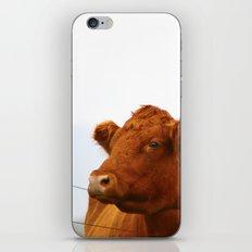 Mooo iPhone & iPod Skin