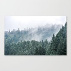 Winter-Green. Fog like SmoKe Canvas Print