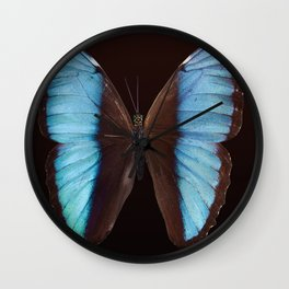 Butterfly exotic Wall Clock