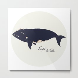 Right whale Metal Print