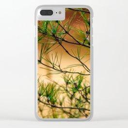 Kinkaku-ji Clear iPhone Case