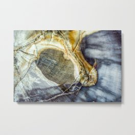 Petrified wood 2003 Metal Print