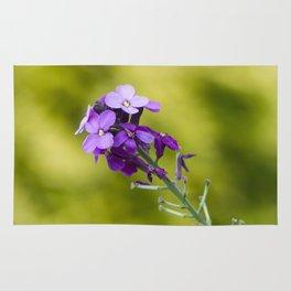 Purple nature Rug