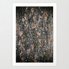 Tree Bark 1.0 Art Print