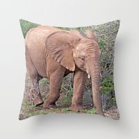 baby elephant Throw Pillows featuring Baby Elephant by Lynn Bolt