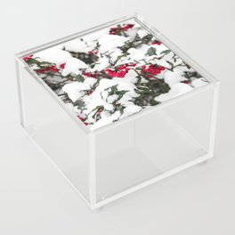 SNOW COVERED HOLLY Acrylic Box