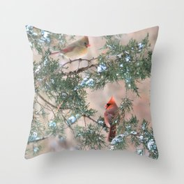 Winter Pair Cardinals (sq) Throw Pillow