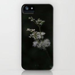 Summer Night Dream iPhone Case