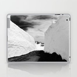 IMAGE: N°27 Laptop & iPad Skin
