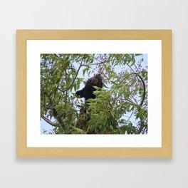 Beary Cherry Framed Art Print