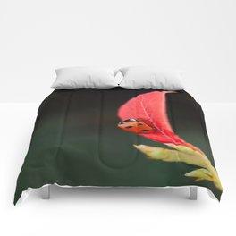 Ladybug On An Autumn Leaf Comforters