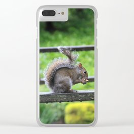 Nuts 'Bout Nuts Clear iPhone Case