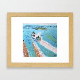 El Acuario  Framed Art Print