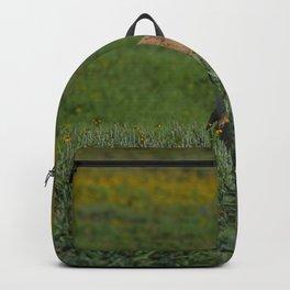 Eyes of the Prairie Backpack